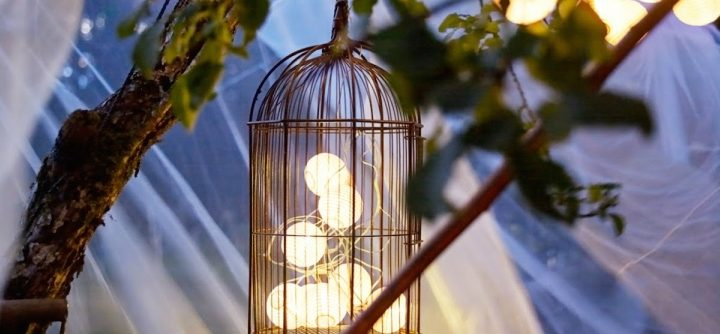 decorating-with-cages