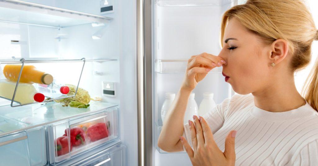 fridge smells bad