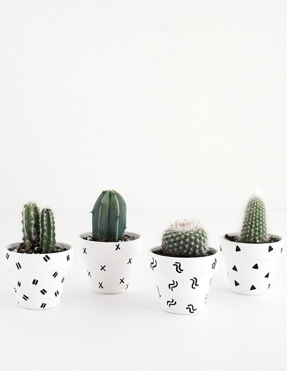 Paint black and white patterns in your pots