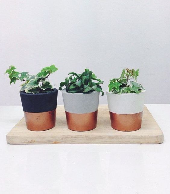 Give a modern touch to your plants with metallic paint