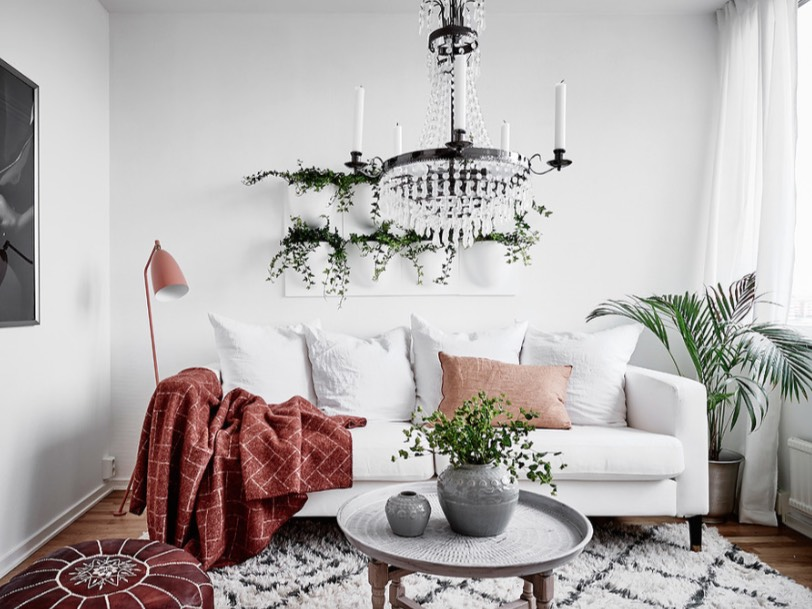 decorating with plants inside the house