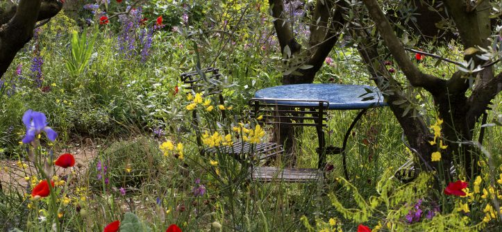 how to make a mediterranean garden