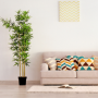 Make Your Home Summer Ready