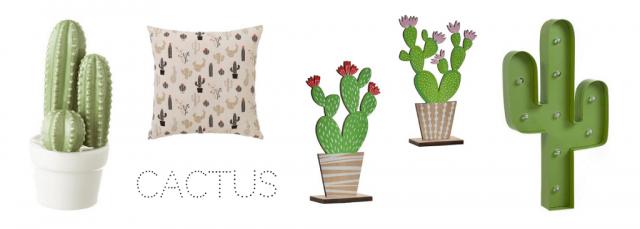 Cactus decor ideas