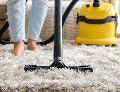 Carpet To Vacuum